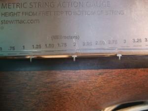 DSCF6316