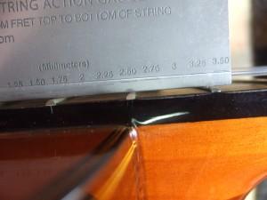 DSCF6516